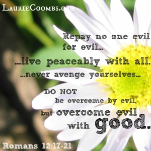 Romans, Romans 12, Romans 12:17-21, Overcome evil with good, do not be overcome by evil, never avenge yourselves, live peaceably with all, Jesus, Christ, Christian, Christian forgiveness, forgiveness testimony, bible forgiveness, biblical forgiveness, forgiveness stories, forgiveness Jesus, forgiveness God, loving your enemy, how to love your enemy, how do I love my enemy, how, words, the power of words, words are powerful, words power, words powerful, Jeff Goins, Goins Writer, written word, spoken word, truth, John 17:17, God's Word, Romans 12:18, work toward forgiveness, reconciliation, reconciling, use words wisely, Proverbs 29:20, gracious words, Proverbs 16:24, Scripture, How can you impact another, The Revolutionary Power of Words
