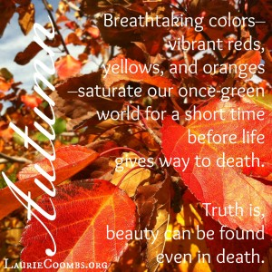 autumn, fall, leaves, die, death, beauty, beauty death, life comes through death, beauty in death, Jesus, Christ, Jesus die, why did jesus die, John 12:24-25, loves life loses it, hates life keeps it, fortune cookie, seed die to have life, seed, die to self, christ at center,