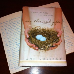 Ann Voskamp, One Thousand Gifts, Book Review, One Thousand Gifts Book Review, Christian book, Good Christian Books, Thankfulness, Thanksgiving, Book Giveaway, Giveaway, fight for joy, joy thanksgiving, joy, how do I find peace, how do i find joy, bestselling book, Christ, Jesus, God, gratitude, journal, gratitude journal, count gifts, gifts, gift god, fight for joy, live life well,