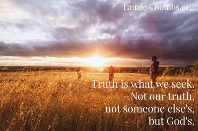 Truth is what we seek